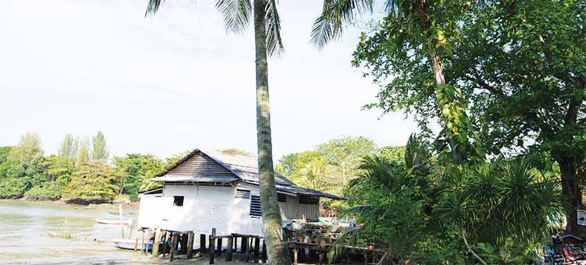 Pulau-Ubin-Afur-Wong